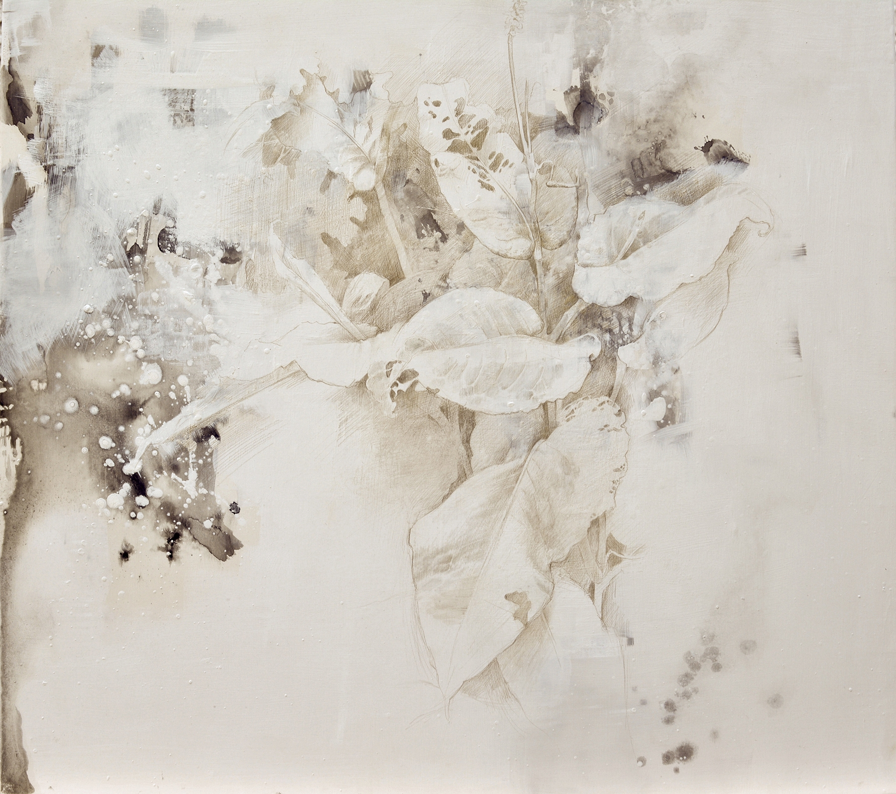 DALE O. ROBERTS  INSECT TAPESTRY  Silverpoint 16 x 18  $2,200.