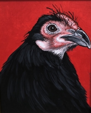 ERIC FAUSNACHT CHICKEN CHATTER  Black English Rooster   Acrylic on Canvas 10 x 8  $250.