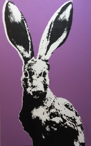 PURPLE JACKRABBIT