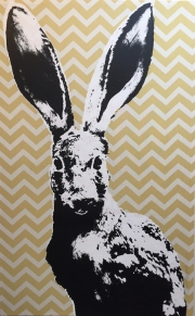 YELLOW CHEVRON JACKRABBIT