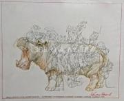 HIPPO BUS, 2013