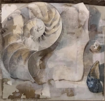 "Dale O. Roberts  ""Nautilus Bisected""  Silverpoint  6.5 x 6.5  $1,200."