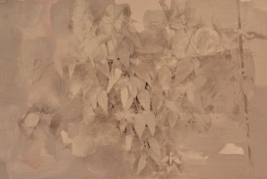 "Dale O. Roberts  ""Butterfly Weed""  Silverpoint  7.5 x 11.5  $1,300."