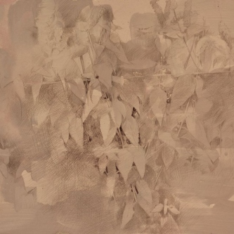 """Dale O. Roberts  """"Butterfly Weed""""  Silverpoint  7.5 x 11.5  $1,300."""