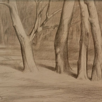 """Dale O. Roberts  """"Woods""""  Silverpoint  5 x 9  $900."""