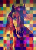 CHECKERED HORSE - SOLD
