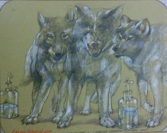 A PACK OF BIG HEADED WOLVES - SOLD