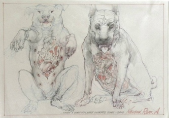 TWO LARGE OVERFED DOGS- SOLD