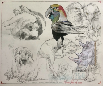 SOLD- Robert A. Nelson |   Birds, 2020 |  Collage: pencil, aquamedia |  14 x 17 |  $ 500. SOLD
