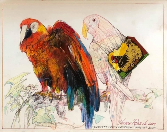 Robert A. Nelson  |  Parrots, 2019 |  Collage- pencil, colored pencil, aquamedia |  11 x 14 | framed |  $950. SOLD