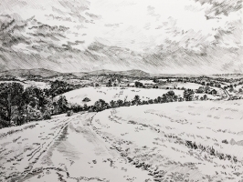 OLIVIA SOLTZFUS  HARRISONBURG VIEWS  Pen 8.5in x 11in  $250