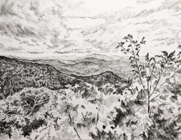OLIVIA STOLTZFUS       SHENANDOAH VALLEY  Pen 8.5in x 11in  $250